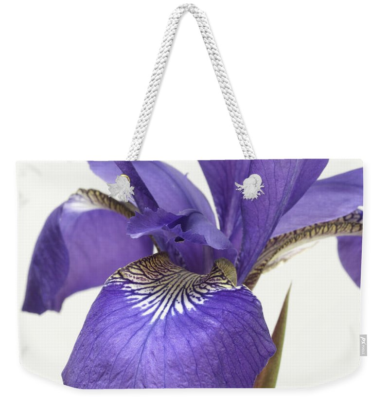 Flower Weekender Tote Bag featuring the photograph Iris by Fran Gallogly