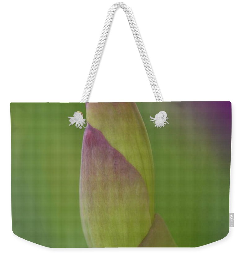 J.d. Grimes Weekender Tote Bag featuring the photograph Iris-istible 2 by JD Grimes