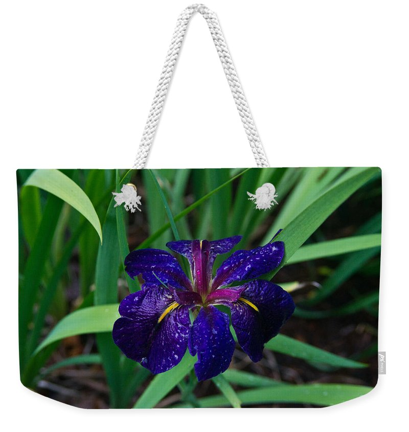 Iris Weekender Tote Bag featuring the photograph Iris With Rain Drops by Douglas Barnett