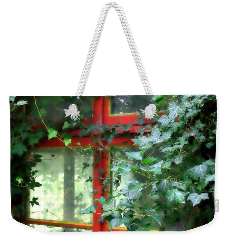 Window Weekender Tote Bag featuring the photograph Ivy Embrace by Carol Groenen