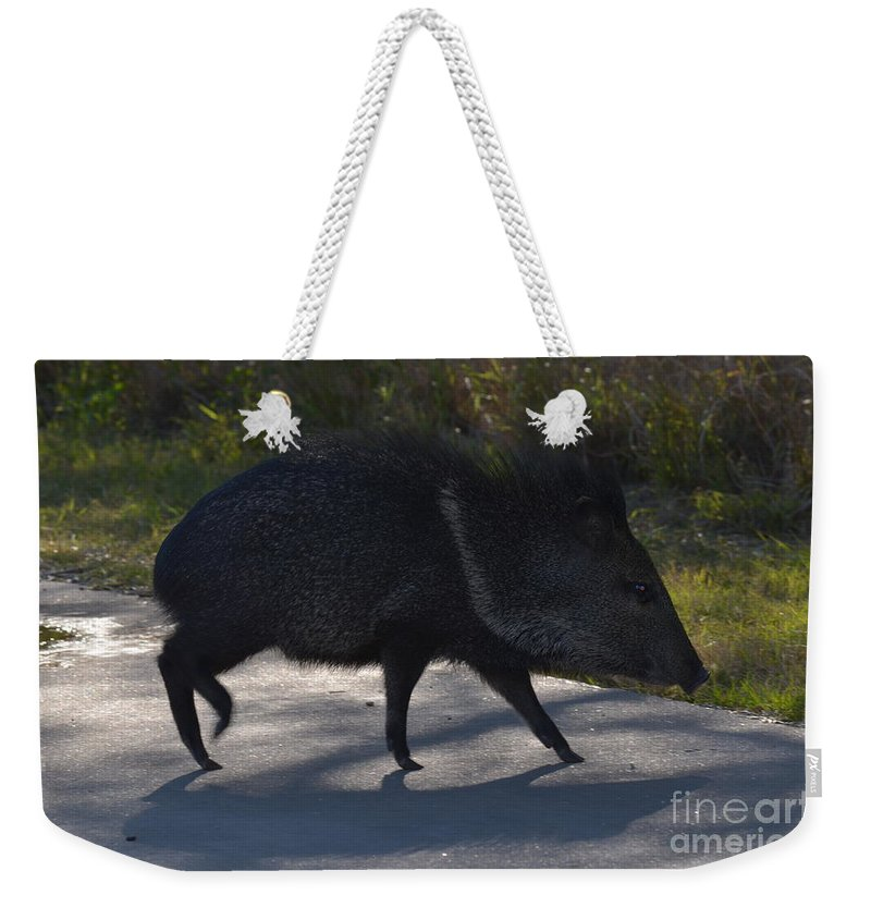 Javelina Weekender Tote Bag featuring the photograph Javelina by Donna Brown