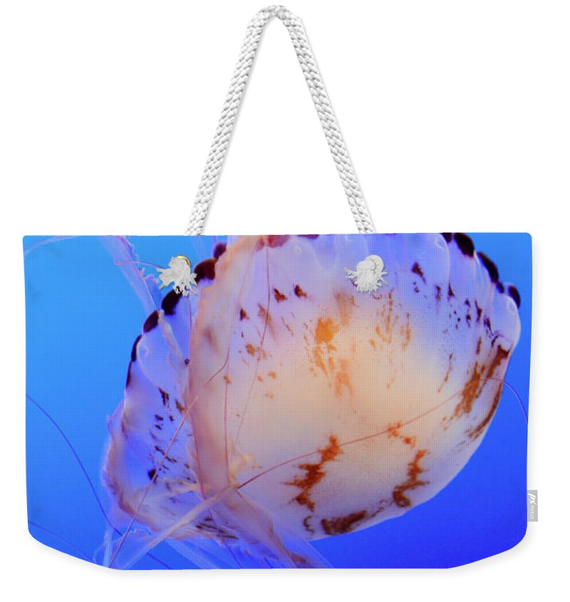Jellyfish Weekender Tote Bag featuring the photograph Jellyfish 5 by Bob Christopher