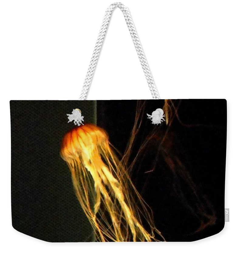 Jellies Weekender Tote Bag featuring the photograph Jellyfish In Dark by Meandering Photography