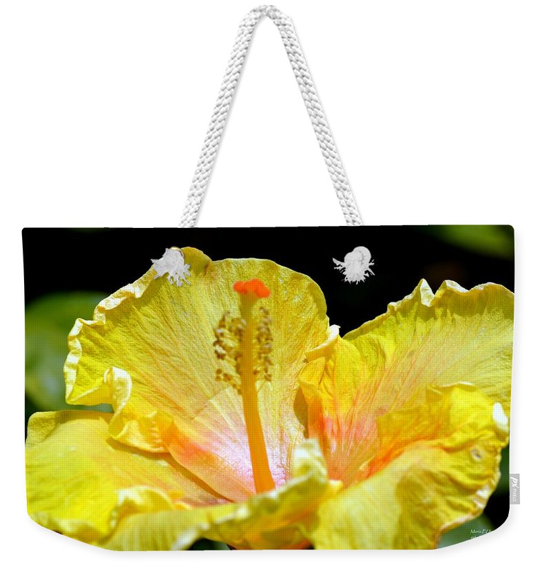 Tad Weekender Tote Bag featuring the photograph Just A Tad Of Orange by Maria Urso