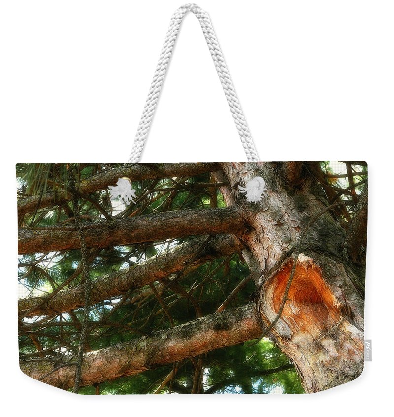 Acrylic Prints; Canvas Prints; Digital; Digital Art; Framed Prints; Greeting Cards; John Herzog; Photo; Photograph; Photography; Posters; Prints; Xdop; Day; Daylight; Daytime; Napanee; Nature; Outdoor; Outdoors; Outside; Horizontal; color Weekender Tote Bag featuring the photograph Knot Hole by John Herzog