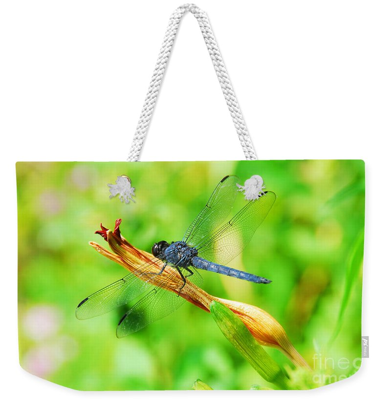 Nature Weekender Tote Bag featuring the photograph Lace Wings by Cindy Manero