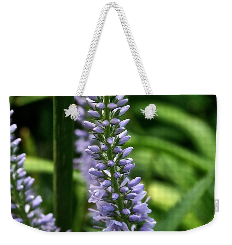 Outdoors Weekender Tote Bag featuring the photograph Lady's Mantel by Susan Herber