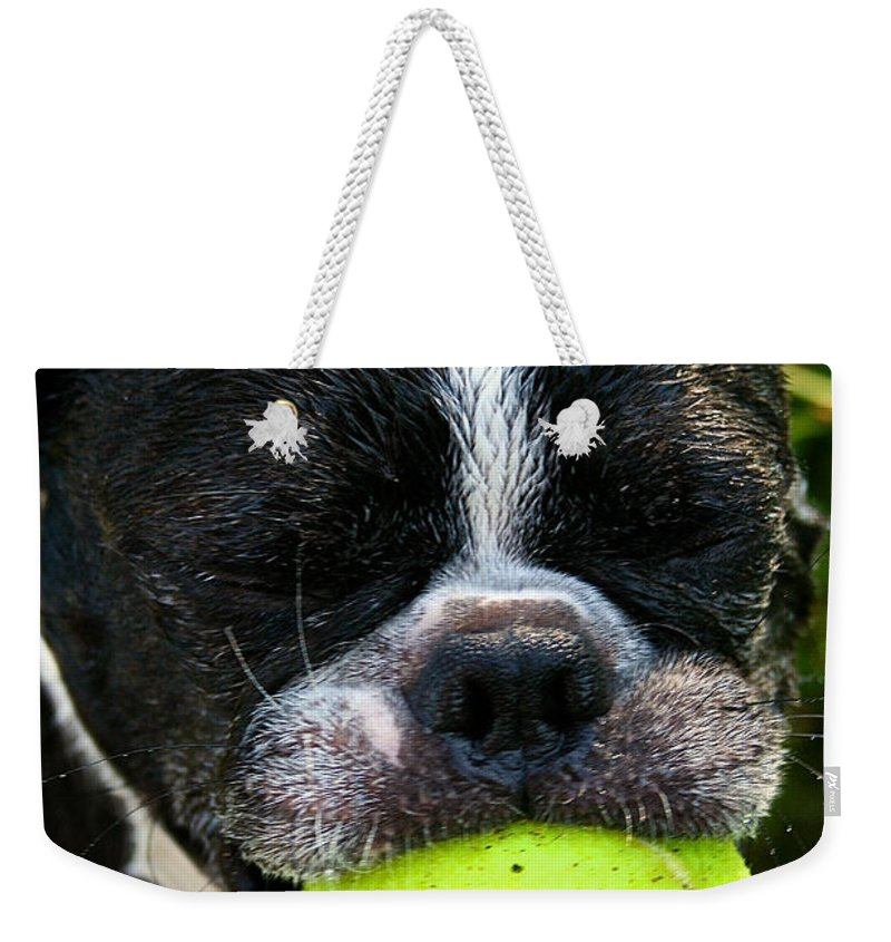 Pet Weekender Tote Bag featuring the photograph Last Laugh by Susan Herber