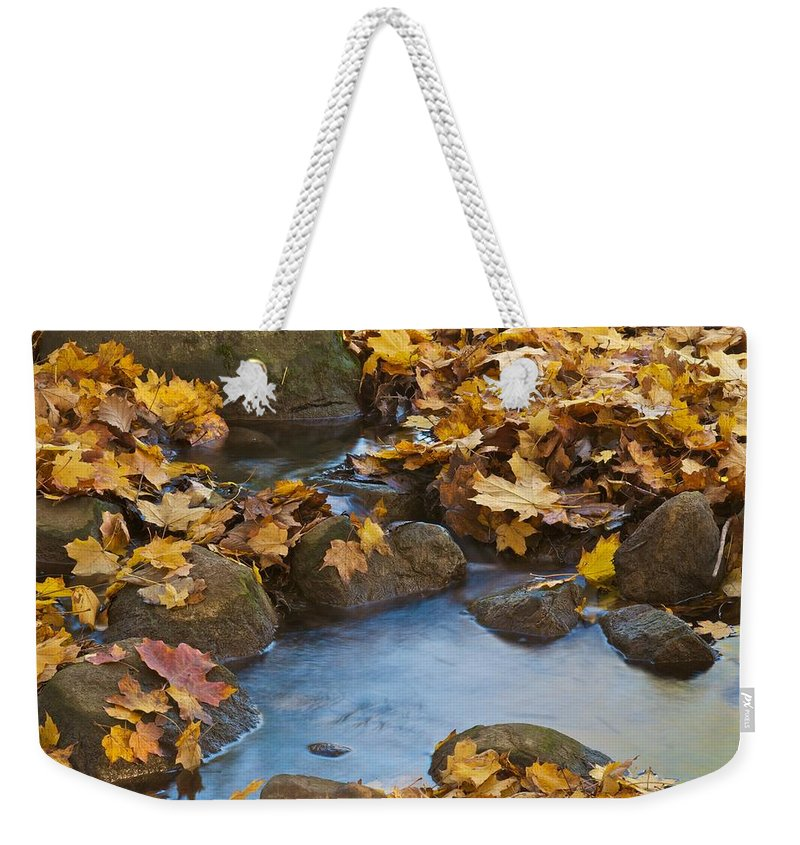Autumn Weekender Tote Bag featuring the photograph Last Signs Of Autumn 0438 by Michael Peychich