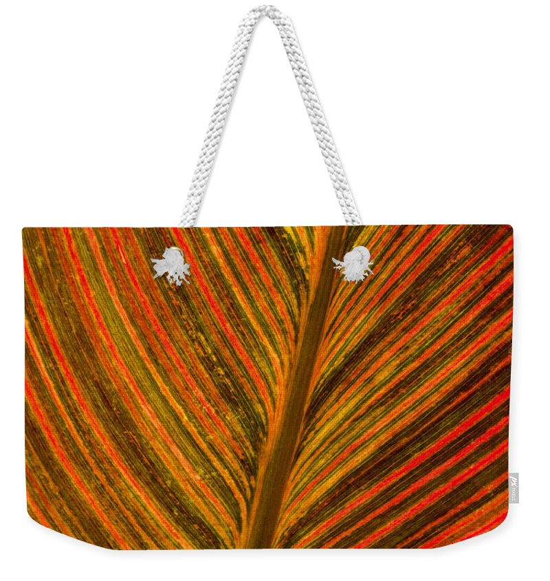Leaf Weekender Tote Bag featuring the photograph Leaf Pattern Abstract by Darleen Stry