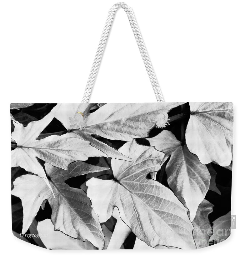 Leaves Weekender Tote Bag featuring the photograph Leaf Study In Black And White by Regina Geoghan