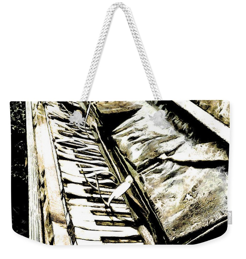 Let Us Entertain You Weekender Tote Bag featuring the photograph Let Us Entertain You by Steve Taylor