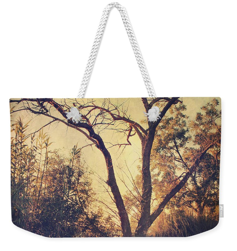 Parks Weekender Tote Bag featuring the photograph Let Us Sit Side By Side by Laurie Search
