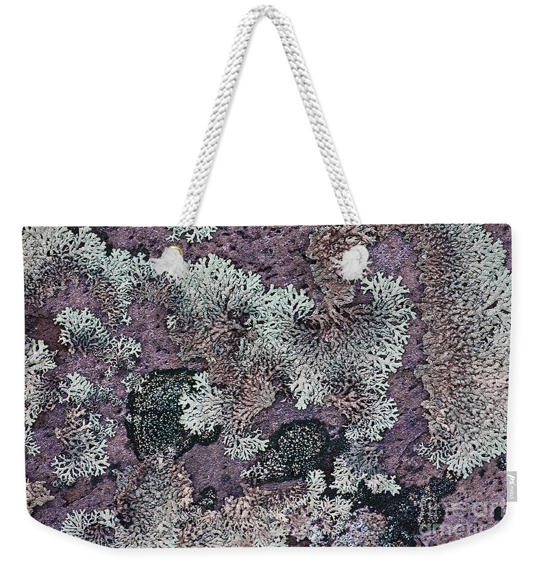Lichen Weekender Tote Bag featuring the photograph Lichen Pattern Series - 57 by Heiko Koehrer-Wagner