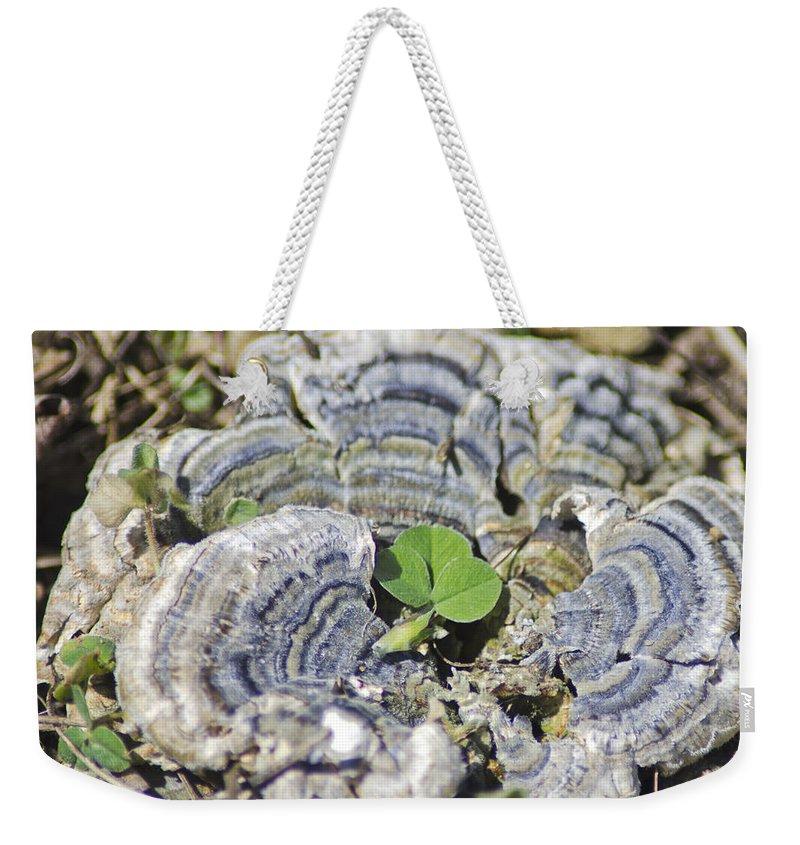 Clover Weekender Tote Bag featuring the photograph Lichen The Shamrock by LeeAnn McLaneGoetz McLaneGoetzStudioLLCcom