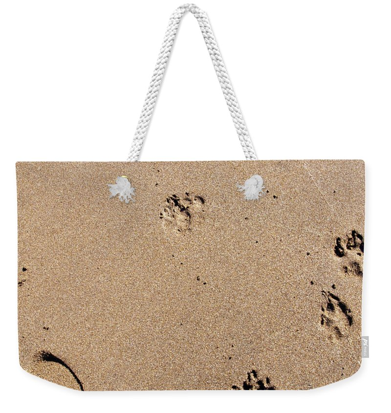 Sand Weekender Tote Bag featuring the photograph Footprints Mans Best Friend by Glenn Gordon