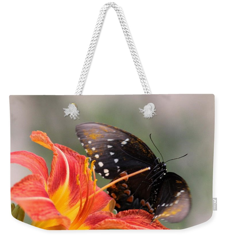 Photos Weekender Tote Bag featuring the photograph Liftoff by Travis Truelove