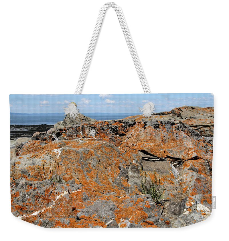 Orange Lichen Weekender Tote Bag featuring the photograph Likin' The Lichen by Doris Potter