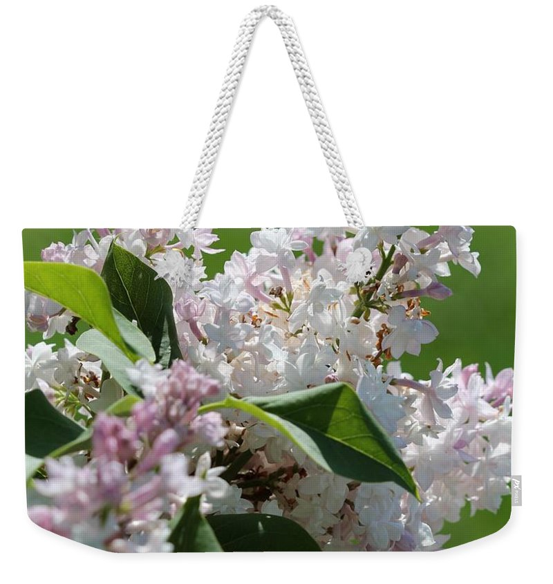 Lilac Weekender Tote Bag featuring the photograph Lilac Named Beauty Of Moscow by J McCombie