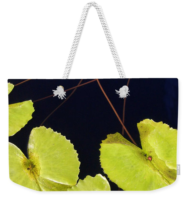 Lily Weekender Tote Bag featuring the photograph Lily Pads And Lotus Blossom by Mike Nellums