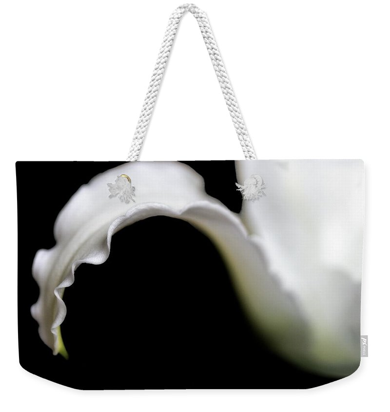 Lily Weekender Tote Bag featuring the photograph Lily Petal From A Side View by Angela Rath