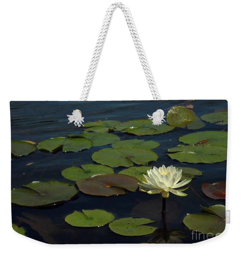 Lake Weekender Tote Bag featuring the photograph Lilypad by Amanda Jones