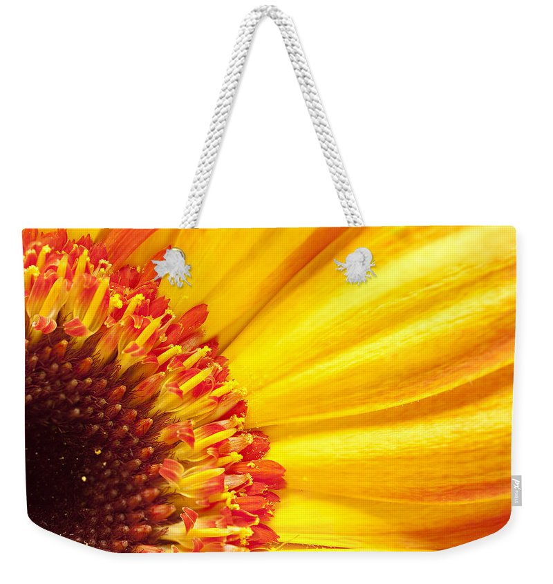 Yellow Weekender Tote Bag featuring the photograph Little Bit Of Sunshine by Eunice Gibb