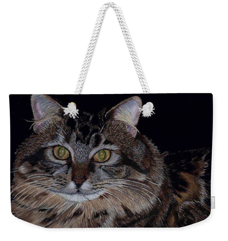 Cat Weekender Tote Bag featuring the painting Little Girl - Maine Coon Cat Painting by Patricia Barmatz