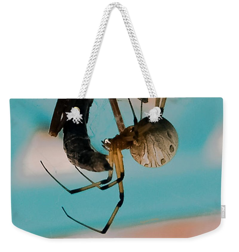 Spider Weekender Tote Bag featuring the photograph Little Miss Venom by DigiArt Diaries by Vicky B Fuller
