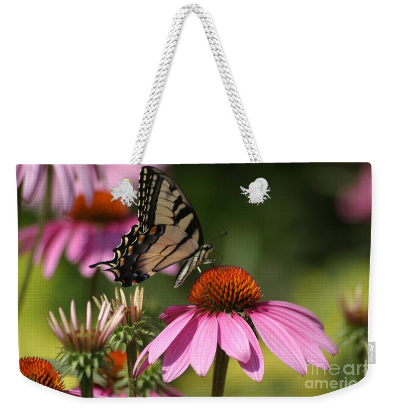 Butterfly Weekender Tote Bag featuring the photograph Living Color by Living Color Photography Lorraine Lynch