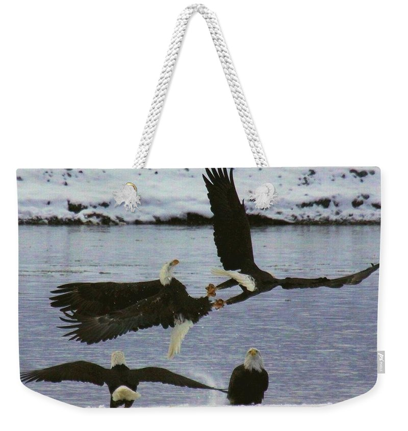 Eagles Weekender Tote Bag featuring the photograph Locked In Battle by Myrna Bradshaw