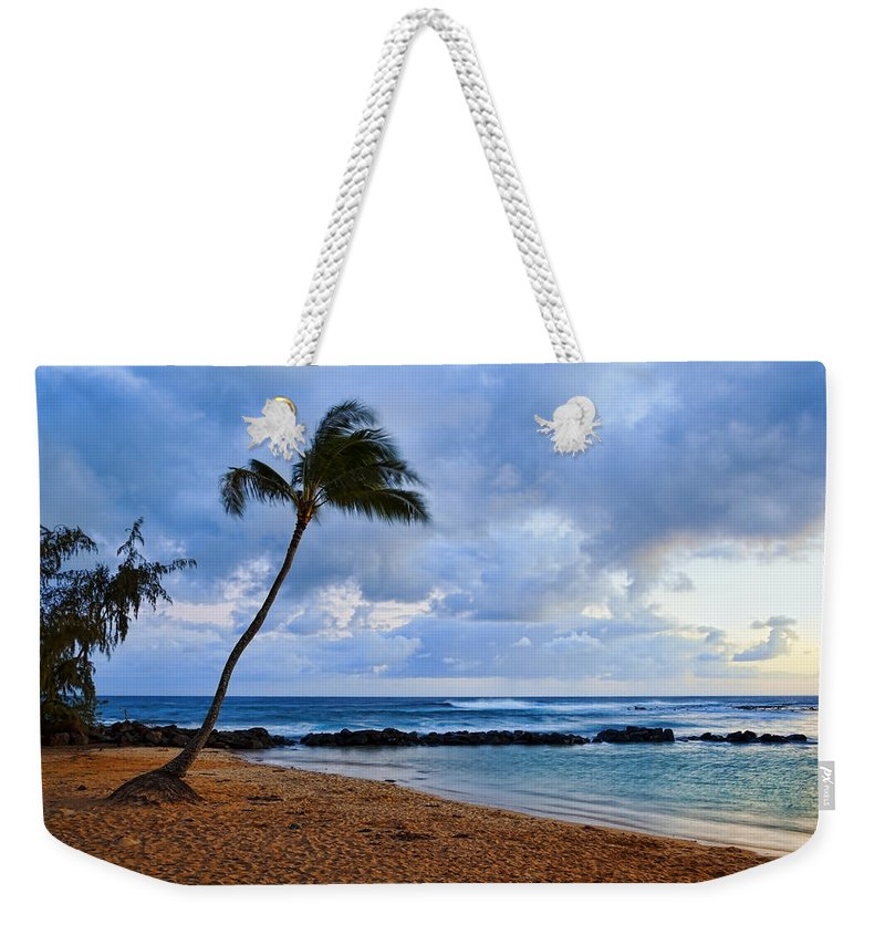 Palm Weekender Tote Bag featuring the photograph Lone Palm by Kelley King
