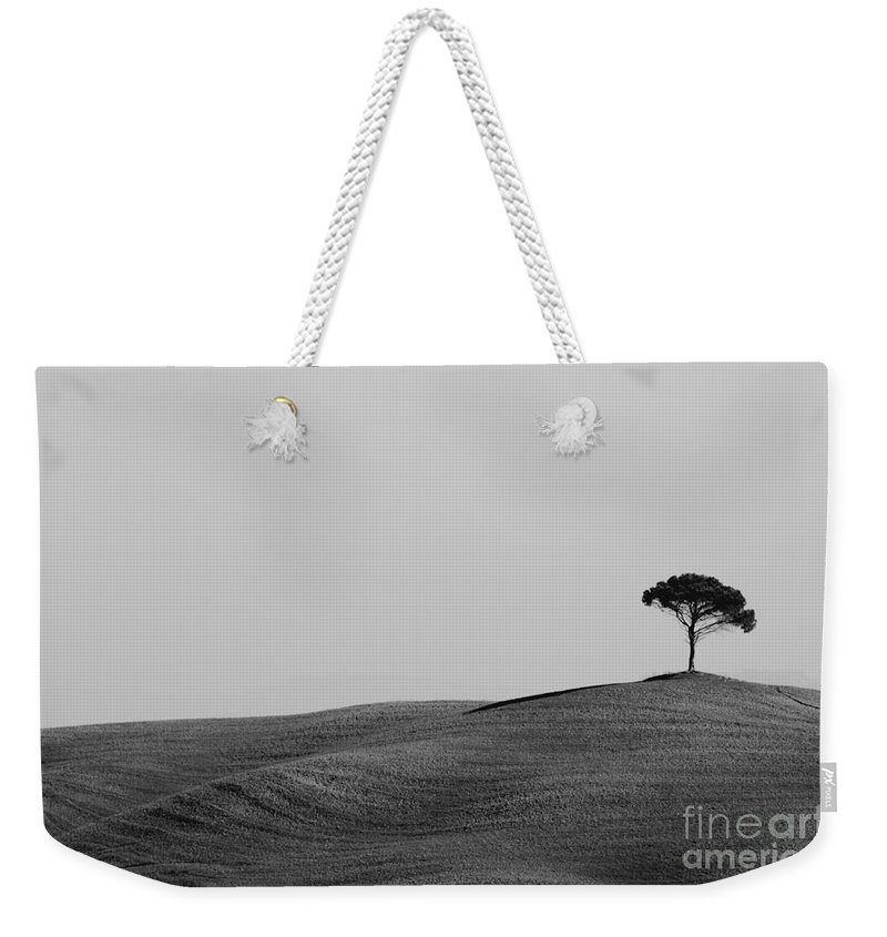 Tree Weekender Tote Bag featuring the photograph Lonely Tree On The Hill by Mats Silvan
