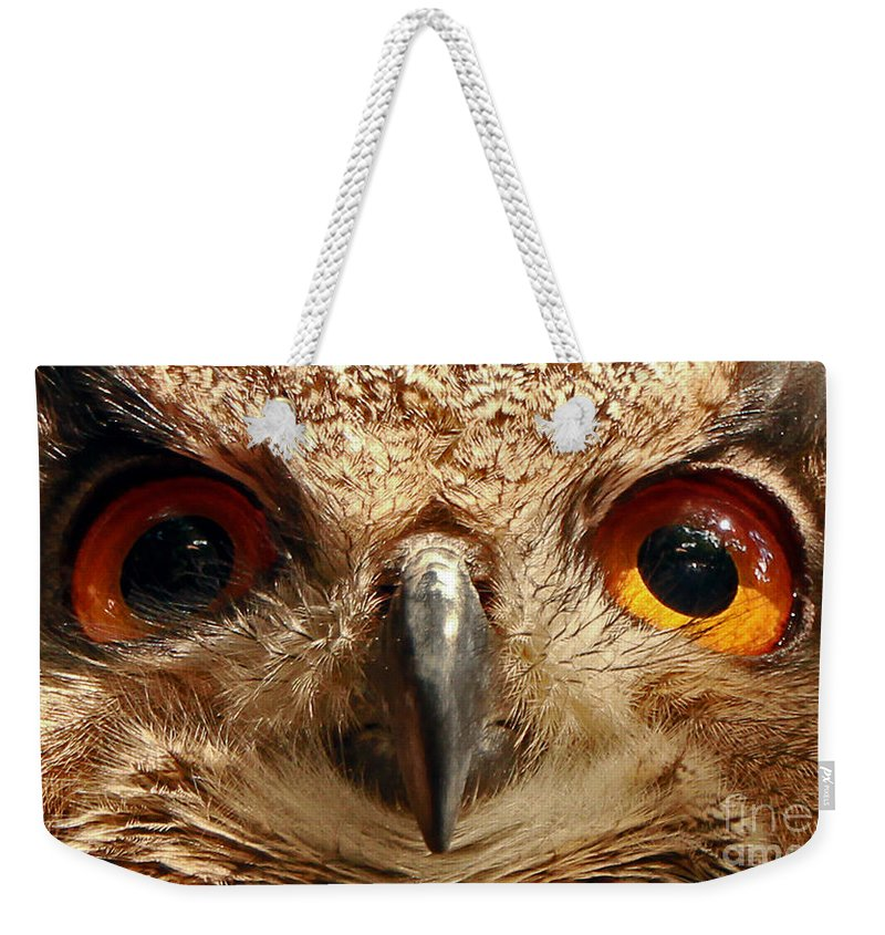 Great Weekender Tote Bag featuring the photograph Look Into My Eyes by Rebecca Morgan