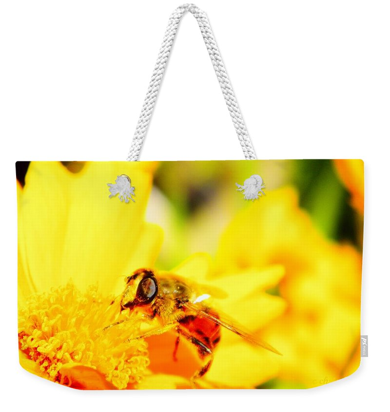 Pollination Weekender Tote Bag featuring the photograph Look Me In The Eye by Chris Berry