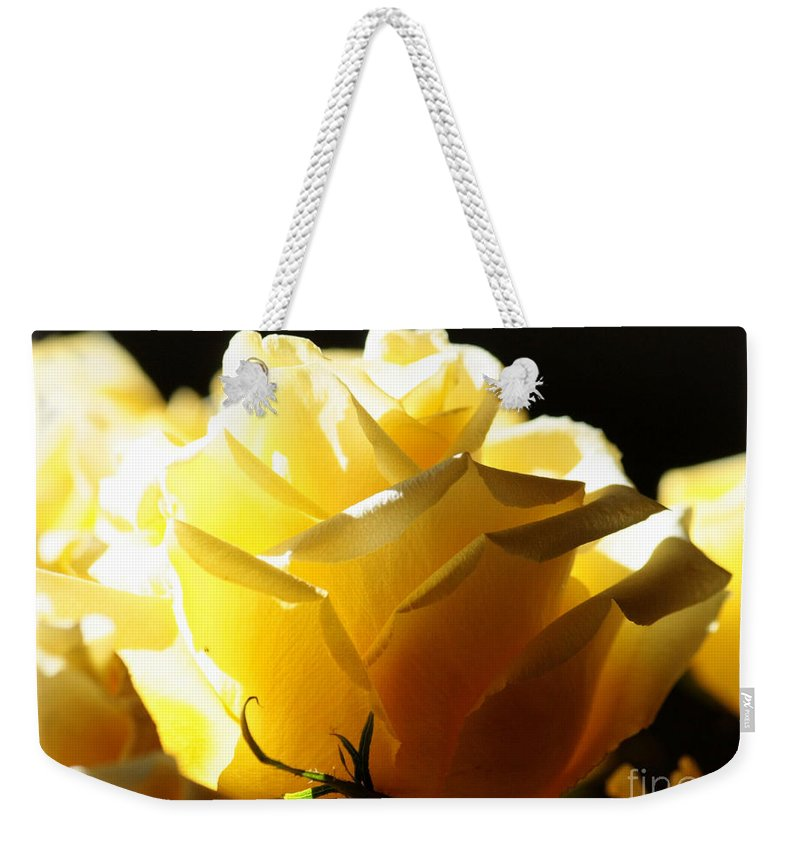 Yellow Rose Weekender Tote Bag featuring the photograph Look On The Bright Side by Carol Groenen