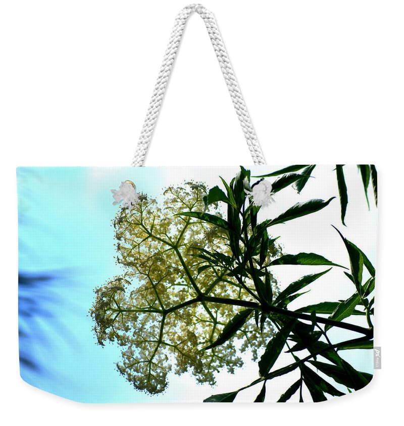 Florida Weekender Tote Bag featuring the photograph Looking Up by Kari Tedrick