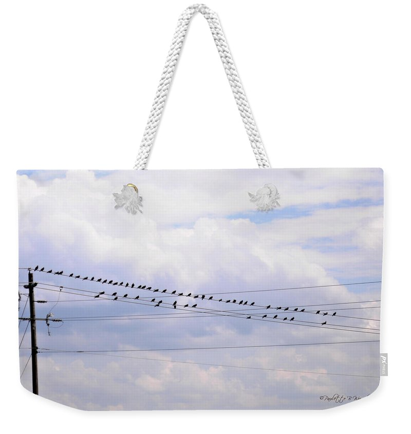 Interior Design Weekender Tote Bag featuring the photograph Lots Of Birds On Wires by Paulette B Wright