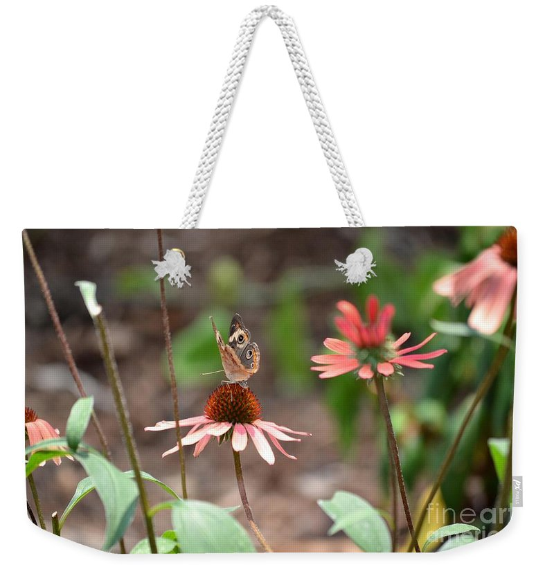Lover Weekender Tote Bag featuring the photograph Lover Of Coneflowers by Maria Urso