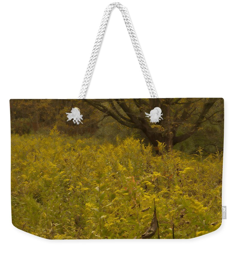 Landscape Weekender Tote Bag featuring the photograph Luminous Meadow by Fran Gallogly