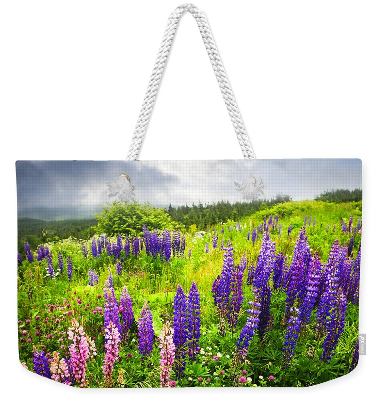 Flowers Weekender Tote Bag featuring the photograph Lupin Flowers In Newfoundland by Elena Elisseeva