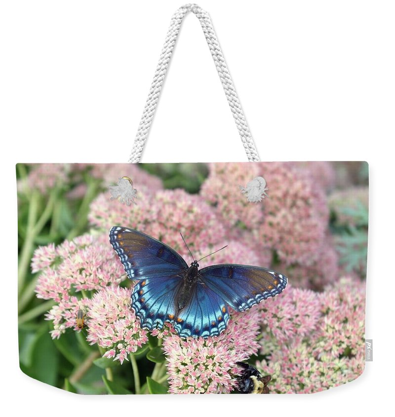 Butterfly Weekender Tote Bag featuring the photograph Madam Blue by Living Color Photography Lorraine Lynch