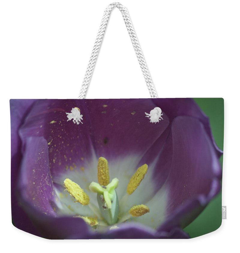 Tulip Weekender Tote Bag featuring the photograph Magenta Magic by Teresa Mucha