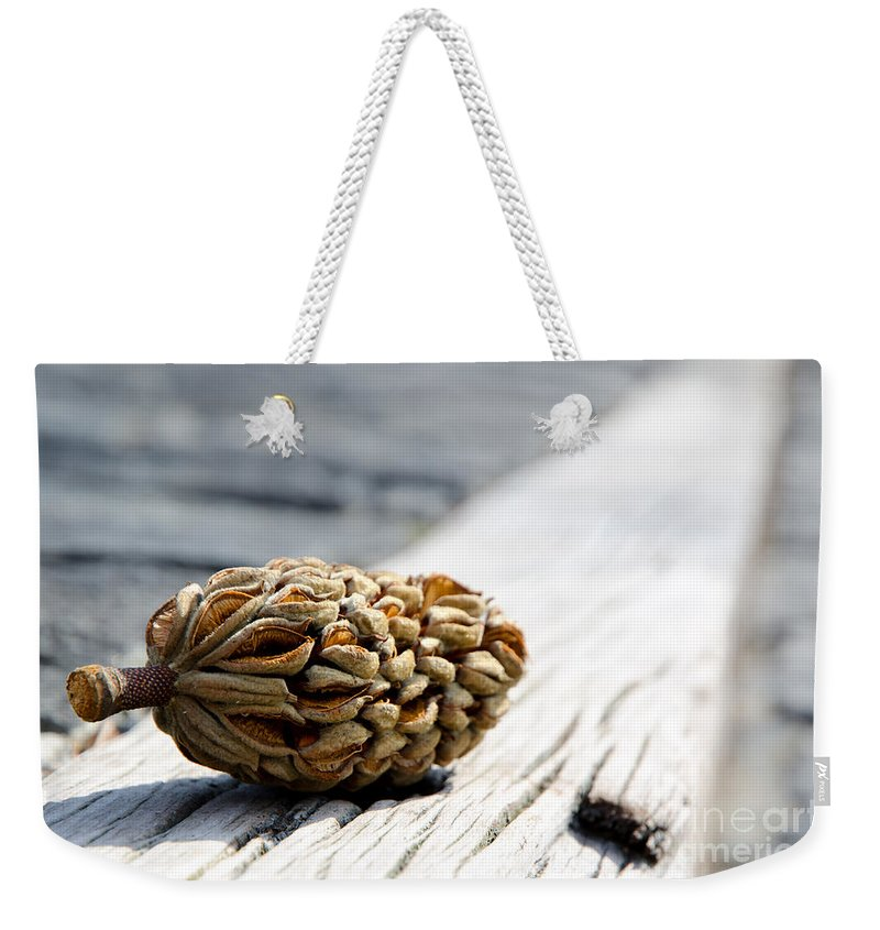 Magnolia Cone Weekender Tote Bag featuring the photograph Magnolia Cone by Mats Silvan