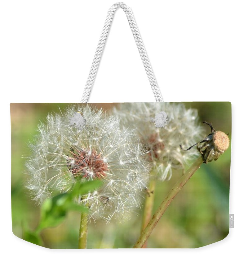 Wish Weekender Tote Bag featuring the photograph Make A Wish by Maria Urso
