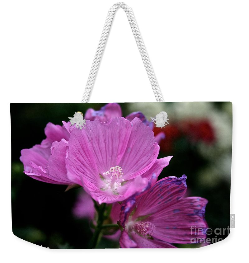 Floral Weekender Tote Bag featuring the photograph Mallow by Susan Herber