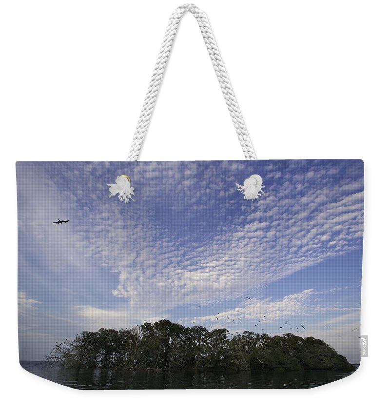 Photography Weekender Tote Bag featuring the photograph Man-of-war Cay Is A Protected Mangrove by Tim Laman