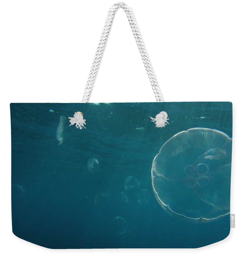 Weekender Tote Bag featuring the photograph Many Moon Jellies by Kimberly Mohlenhoff
