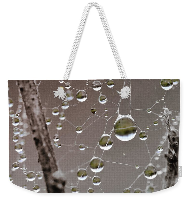 Abstract Weekender Tote Bag featuring the photograph Many Worlds In One Small Space by Susan Capuano