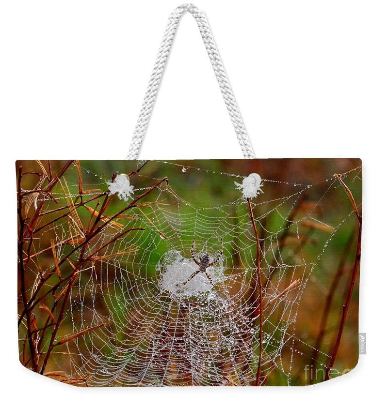 Spider Web Weekender Tote Bag featuring the photograph Marsh Spider Web by Carol Groenen